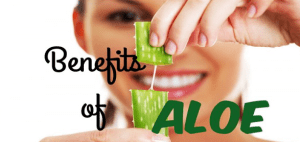 Header-Benefits-Of-Aloe