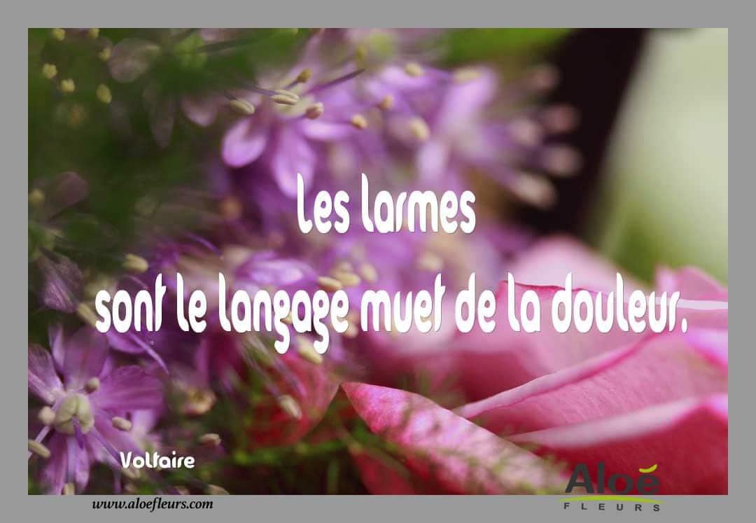 Messages Citations Pomes Pour Le Deuil ALOE FLEURS