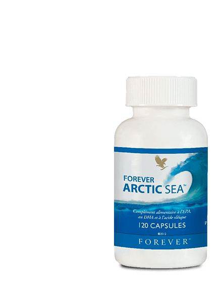 forever arctic ea