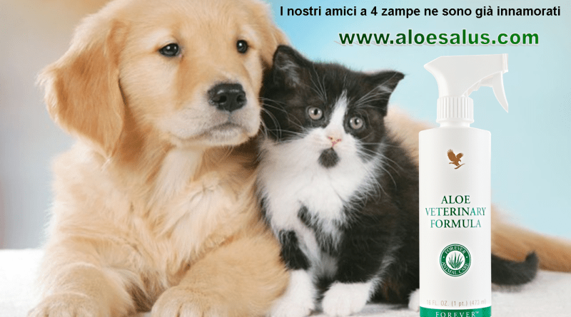 Aloe Veterinary Formula