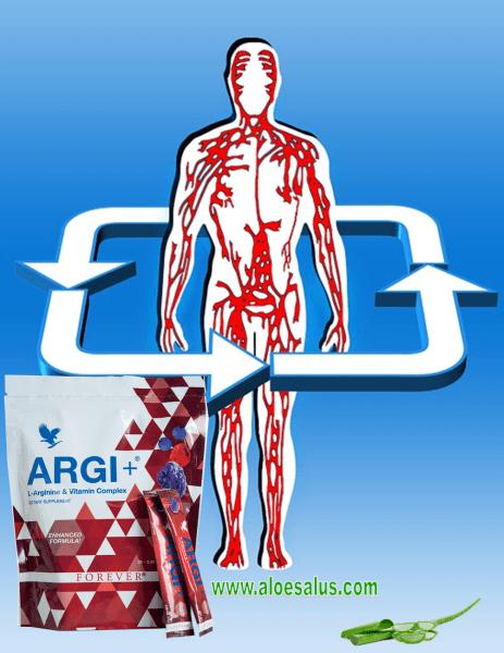 Argi+ Circolazione 1