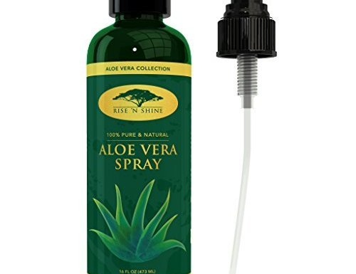 (473ml) Aloe Vera Spray para cara – Zumo de Aloe Vera planta puro, perfecto humectante para vello facial y de actualidad, proporciona alivio para quemaduras solares, Eczema, seco dañado piel, Razor golpes, acné y envejecimiento de la piel