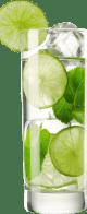 Cocktail aloe vera fraîcheur menthe & citron