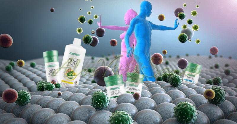 Solutions naturelles pour protéger son système immunitaire et bien passer l'hiver