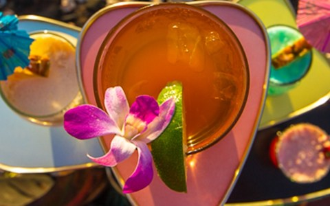 Karl Bradford Photography - Aloha Bars Maui - Hawaii Classic Cocktails
