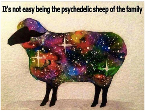 psyco-sheep-of-fam