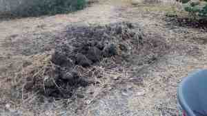 Hugelkultur Step 5 - Using the Soil You Dug out of the Trench, Bury the Vegetation and Cover the Soil with Mulch
