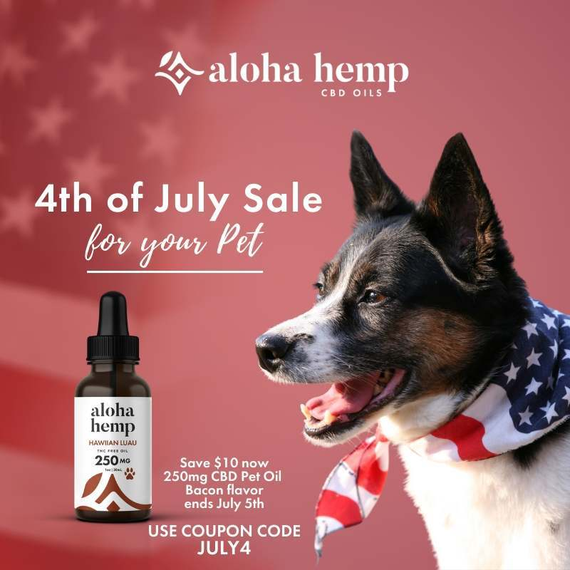 4th of July Sale - For Your Pet - Dog