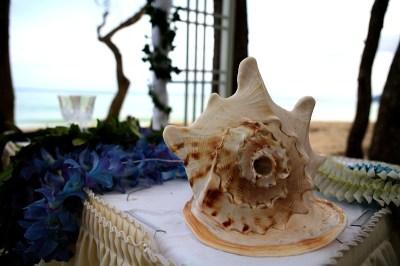 Hawaiian Conch shell used for weddings