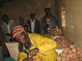 Farmer in crops market after loan