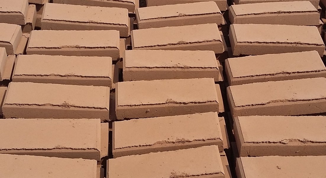 Environmentally friendly bricks