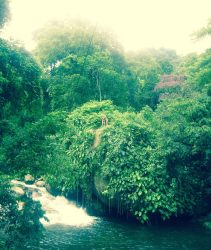 An Adventure in Paraty, Brazil
