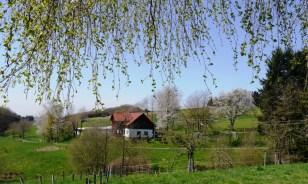 Blick von Ferienhaus Villa Alpaka