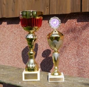 2 Colour Champions 2017, Traboch und Alsfeld