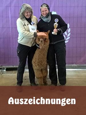 Alpakazucht - Alpaka des Westens - Auszeichnungen