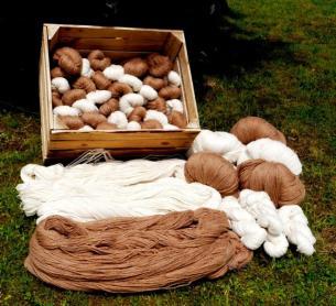 versponnene Wolle von eigenen Alpakas