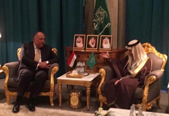لقاء سامح شكري ونظيره السعودي