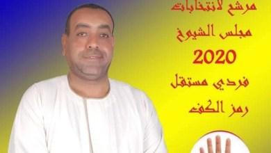 علاء الدين حلمي-مرشح لعضوية مجلس الشيوخ عن محافظة قنا