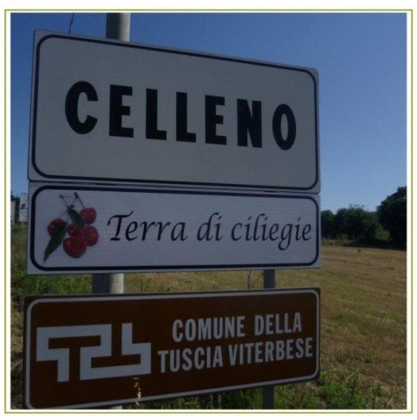 Ciliegia di Celleno