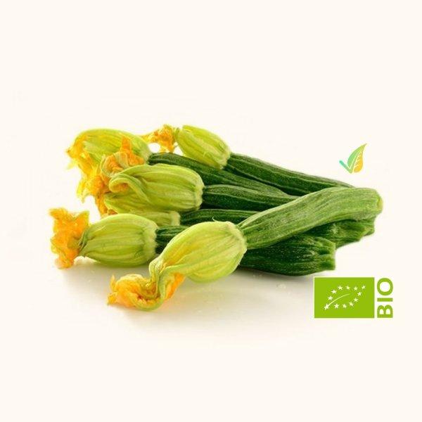 Zucchina RomanescaBiologica