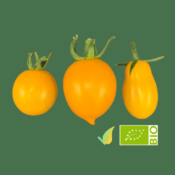 Mix Pomodorini Gialli Bio