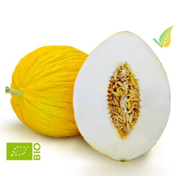 Melone Giallo Biologico