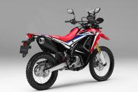 Honda CRF 250 Rally