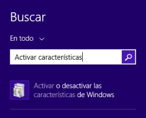 Buscar activar características en el menú de inicio de Windows 8