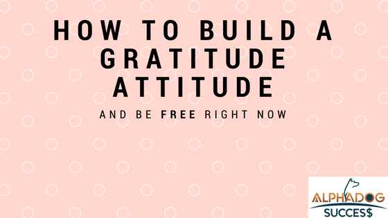 How to Build a Gratitude Attitude and be free now