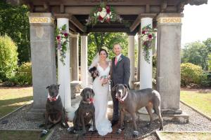 Drew Kairos, Wife, Dogs, Wedding Portrait