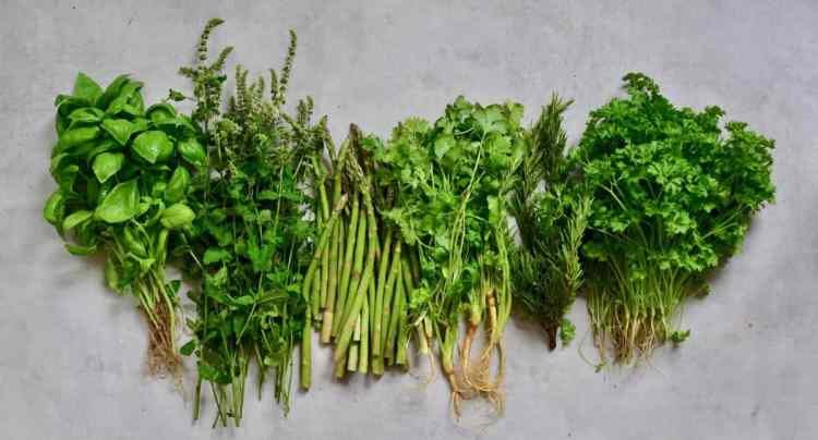 How to organise your fridge, reduce waste, plastic-free tips with food storage hacks.  Storing herbs