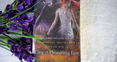 City of Heavenly Fire Review