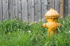 The Basics of Fire Hydrant Maintenance