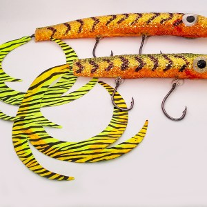 Curly-tail Minnow