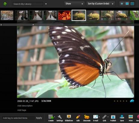 blog-new-improved-flash-462x409