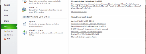 Microsoft Excel 2010 file info