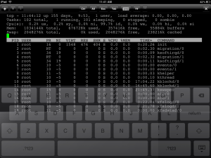 Apple iPad iSSH tool