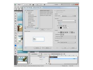 Adobe Captivate 5 styles
