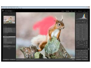 Adobe Lightroom 4 Beta