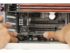 How to install expansion cards