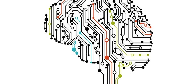 Calls for watchdog to prevent AI discrimination