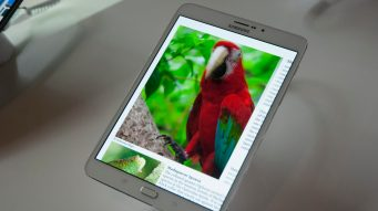 samsung_galaxy_tab_s2_-_front_parrot