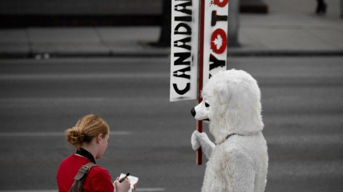 polar_bear_protest
