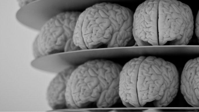 black_friday_brains