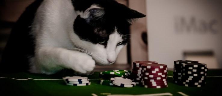 """Las empresas de juegos de apuestas online """"pueden estar infringiendo la ley"""""""