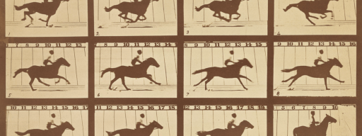 horse_in_motion