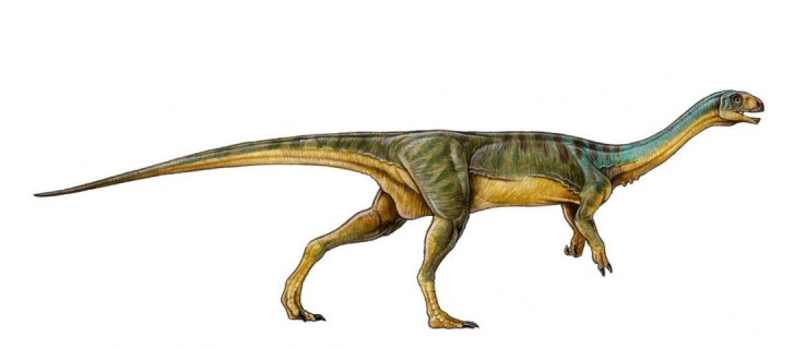 Meet Chilesauraus: A Mr Potato Head dinosaur that moved from meat to veg