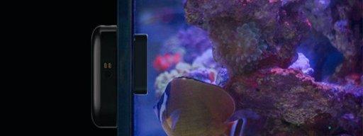 kickstarter_of_the_week_moai_aquarium_robot_1