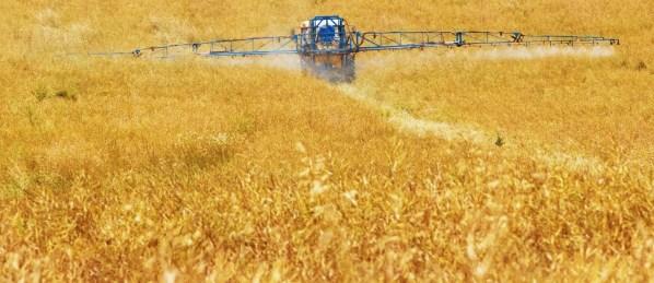 25_yep_farming_initiative