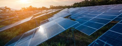 chernobyl_solar_panels
